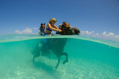 Provo Ponies, Turks and Caicos Adventure Photographers